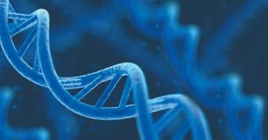 یادداشت های زیستی: فصل مولکول های اطلاعاتی